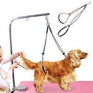 ペットトリミングテーブル専用 リード紐 美容室 動物病院用 ペット用品 レッドとブルー (M)