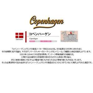 コペンハーゲン・ダニッシュミニクッキー|zakkaswitch|04