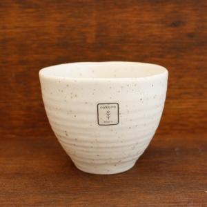 【rokuro 】ディノン新煎茶|zakkaswitch
