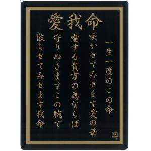 ツッパリ下敷き  愛我命 B5 (定形外郵便可)|zakkatengoku