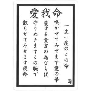 透明 ツッパリ下敷き  愛我命 B5 (定形外郵便可)|zakkatengoku