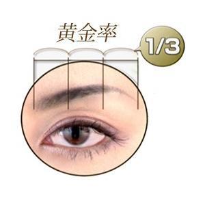 眉描きプレート my brow (マイブロウ)|zakkatengoku|03