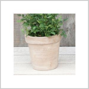 ナチュラル 雑貨 プランター 植木鉢 鉢 ポット ガーデン ガーデニング ナチュラプランター ROUND S|zakkayafree