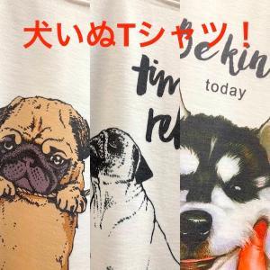 メンズTシャツ/犬好き 白いTシャツ メンズM〜L アジアTシャツ 動物 アニマル パグ ハスキー 犬いぬTシャツ|zakkayakaeru