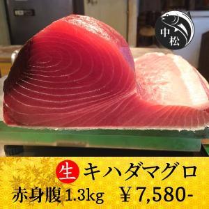 敬老の日 マグロ 刺身 赤身 ポイント消化 キハダマグロ 1.3kg zakobanakamatsu-ys