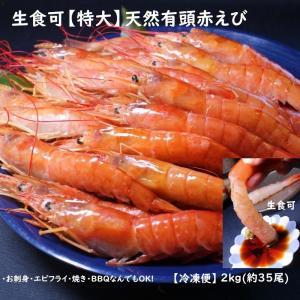 特大天然赤エビ 2kg(約35尾)【送料無料】 赤えび 赤エビ あかえび アカエビ