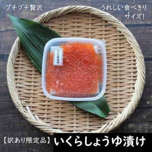 【びっくり市】 イクラしょうゆ漬け140g 白鮭 いくら 訳あり 数量限定 冷凍 魚卵