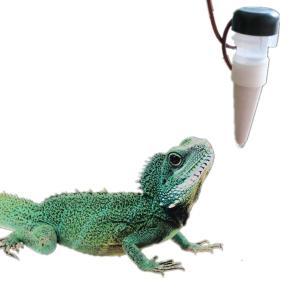 爬虫類 給水 カメレオン 給水 ポンプ ペット