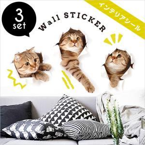 ウォールステッカー 激安 猫 雑貨 可愛い リアル プチプラ ねこ 壁紙 ステッカー ウォールステッカー 猫 飛び出す 猫グッズ インテリア|zakzak