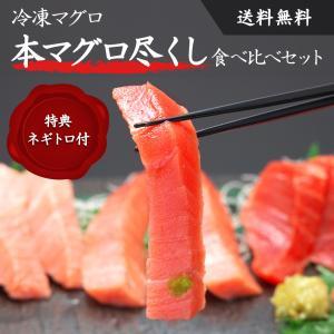 【送料無料】本マグロ尽くし食べ比べセット 特典ネギトロ 合計約1.1kg 水産会社直送 大トロ 赤身 中トロ 刺身 海鮮 贅沢盛|zaoasunaro