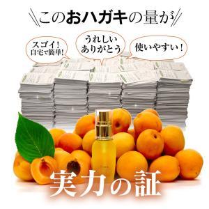 アンミオイル(30ml)杏仁オイル|zealandbifu|04