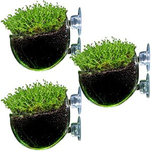 水中庭園 アクアリウム クリア ガラス ポッド 水槽 オブジェ 水草 レイアウト 熱帯魚(3個セット)|zebrand-shop