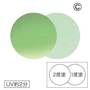 AKZENTZ オプションズポリッシュカラーズ 131 シーフォームグリーン【OK】