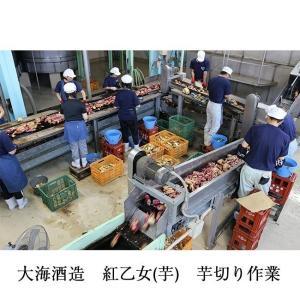 コセイズ倶楽部 ZUTTO ASHITA WA 25度 1800ml 大海酒造|zen8|05