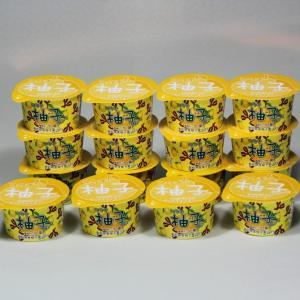 お中元 高知県産 柚子ソルベ 16個 ゆず ユズ アイス シャーベット さっぱり 残暑|zenzaemon