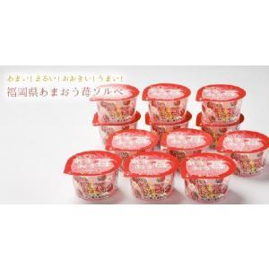 ギフト 果汁あふれる あまおう苺ソルべ 12個 アイス シャーベット お祝 プレゼント|zenzaemon|02