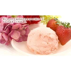 ギフト 果汁あふれる あまおう苺ソルべ 12個 アイス シャーベット お祝 プレゼント|zenzaemon|03