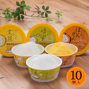 お中元 Made in 土佐 アイスクリンと柑橘シャーベット 10個セット アイスクリーム ギフト|zenzaemon
