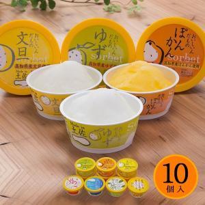 お中元 暑中見舞い Made in 土佐 おいしいんだもの 高知アイスセット 10個セット アイスクリーム シャーベット|zenzaemon