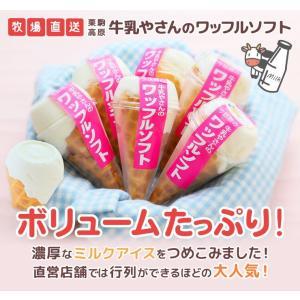 アイス ギフト プレゼント 残暑見舞い 栗駒高原 牛乳やさんのワッフルソフト6本入り アイスクリーム|zenzaemon