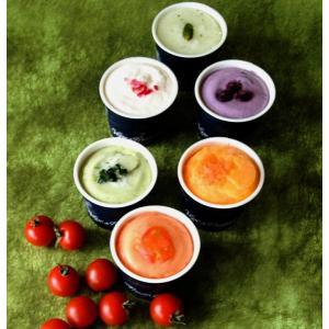 アイス ギフト ベジターレ とれたて野菜と果実 生ジェラート 6個入り プレゼント ヘルシー 贅沢|zenzaemon