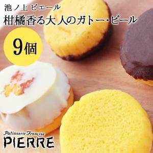 池ノ上ピエール「ガトー・ピール」9個 スイーツ 詰め合わせ ギフト チョコレート菓子 フルーツ プレゼント|zenzaemon
