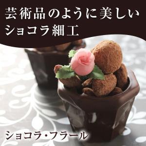 バレンタイン チョコ 池ノ上ピエール ショコラ・フラール トリュフ 生チョコ|zenzaemon