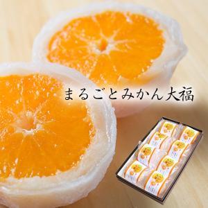 人気 お菓子 まるごとみかん大福 8個入 和菓子 スイーツ 新杵堂|zenzaemon