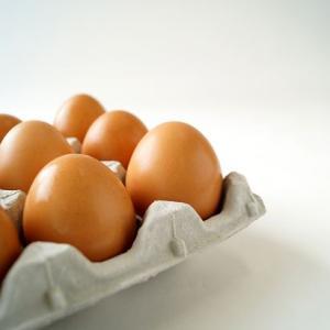 黄身の色と濃厚度合いがハンパない卵  業務用 いきいきたまご(80個) 送料込み|zeppinchibahonpo|04