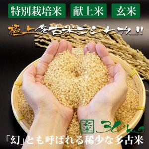 令和2年産 新米 産地直送 プロも認める 萩原農場 の 特別栽培米 多古米 コシヒカリ 【玄米】 30kg|zeppinchibahonpo