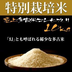 令和2年産 新米 プロも認める 美味しい お米 産地直送 極上の多古米 萩原農場 の 特別栽培米 高級米 多古米 コシヒカリ 【精米】 10kg|zeppinchibahonpo