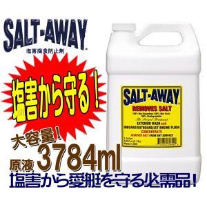 大容量3784ml SALTAWAY ソルトアウェイ (塩害腐食防止剤) 原液●ソルト5|zero-com