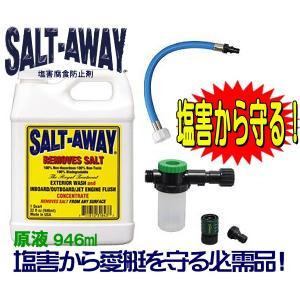 ソルトアウェイ SALTAWAY エンジンフラッシングパッケージ  YAMAHA650 700cc以外 SJ(03-) ヤマハ●ソルト8