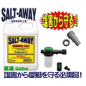 ソルトアウエイ 塩害腐食防止 SALTAWAY エンジンフラッシングパッケージ2010〜●ソルト3|zero-com