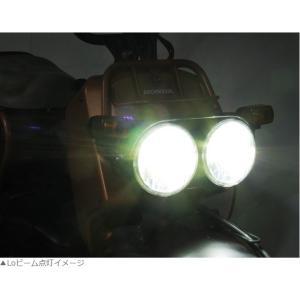 ズーマー(ZOOMER)01〜06年 AF58 LB7-ZO LEDヘッドライトバルブキット PH7 6000K PROTEC(プロテック)|zerocustom