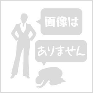 セロー250(SEROW)JBK-DG17J POWER BOXマフラーステンレス SP忠男(SP TADAO)|zerocustom