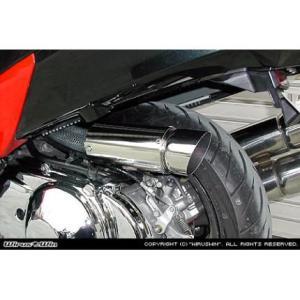 サイレンサー型エアクリーナーキットポッパータイプ ウイルズウィン(WirusWin) スカイウェイブ(SKYWAVE)CJ43 zerocustom