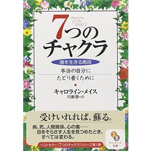 7つのチャクラ (サンマーク文庫) 中古 古本