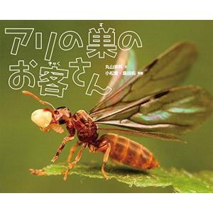 アリの巣のお客さん 中古 古本