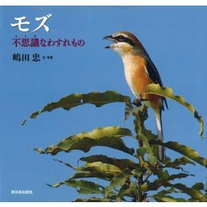 モズ―不思議なわすれもの (日本の野鳥) 中古 古本