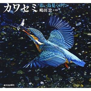 カワセミ―青い鳥見つけた (日本の野鳥) 中古 古本