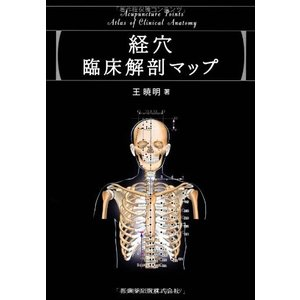経穴臨床解剖マップ 中古