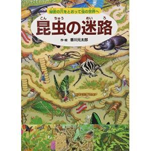 昆虫の迷路 中古書籍 古本