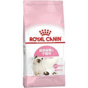 ロイヤルカナン FHN キトン 子猫用 2kg zeroum