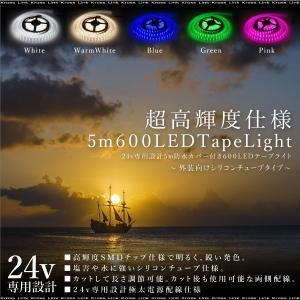 LEDテープライト 24V 5M 幅16mm 600LED 激光 シリコンチューブ 防水 両側配線 ホワイト 暖色 ブルー グリーン ピンク 条件付 送料無料 あす つく _@a863|zest-group