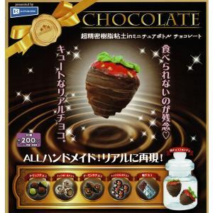 超精密樹脂粘土 in ミニチュアボトル チョコレート zeus-japan