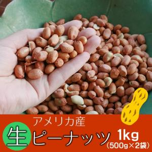 生ピーナッツ1kg(500g×2袋) アメリカ産ピーナツ 無添加 薄皮付 ネコポス便送料無料・込