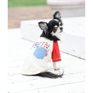 ペット EDWIN/エドウイン/アメリカンシャツ/犬服(ドッグウェア)|ZOZOTOWN PayPayモール店