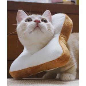 食パン エリザベスカラー キズよけ
