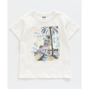 tシャツ Tシャツ 4色2柄らくがきフォトTシャツ